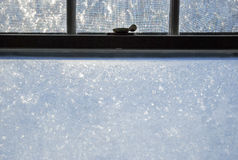Frozen Window Pane Sash Lock Stock Photos