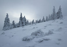 Frozen winter alpine landscape in early morning fog Royalty Free Stock Photography