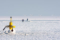 Frozen winter arctic water. Navigation buoy and people walking on frozen arctic water in frigid winter Stock Photos