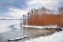 Frozen winter island coast Royalty Free Stock Images