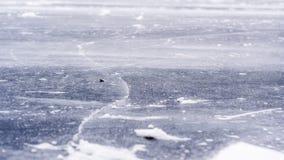 Frozen winter lake Stock Images