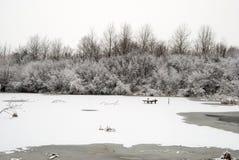 Frozen winter lake Stock Photos