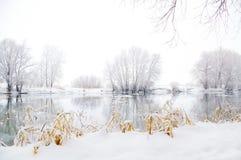 Frozen winter landscape Stock Photos
