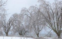 Free Frozen Winter Landscape Royalty Free Stock Image - 95310776