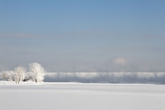 Frozen winter landscape with Frosted Trees. Frozen winter landscape with iced over trees. The frzen mist coming up off the lake stock photo