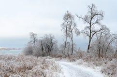 Frozen winter landscape Stock Photography