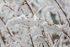 Frozen Winter Landscape in sichuan,China stock photography