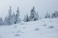 Frozen winter mountain landscape in extreme cold conditions Stock Images