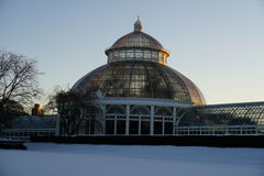 Frozen:  Winter At The New York Botanical Garden 22 Royalty Free Stock Photography