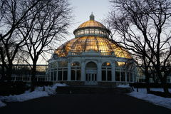 Frozen:  Winter At The New York Botanical Garden 20 Royalty Free Stock Photo