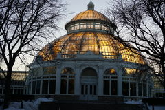 Frozen:  Winter At The New York Botanical Garden 16 Royalty Free Stock Photos