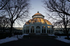 Frozen:  Winter At The New York Botanical Garden 12 Royalty Free Stock Photo