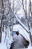 Frozen winter river in Estonia Stock Photos