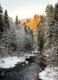 Frozen winter river landscape Stock Image