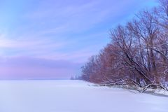 The frozen winter river in wood under snow Royalty Free Stock Photos
