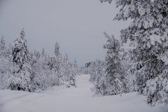 Frozen winter road in Finland stock photo