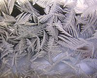 Frozen winter window Stock Images