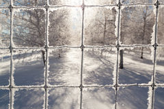 Frozen Wire Fence Royalty Free Stock Photos
