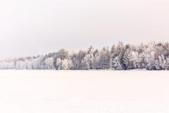 Frozen Wisconsin River. A beautiful scene of the frozen Wisconsin river in January Stock Image