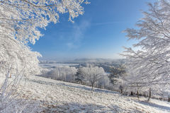 Frozen  withe snow winter magic Landscape Nature Royalty Free Stock Photography