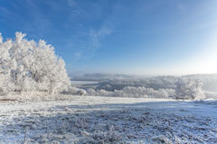 Frozen  withe snow winter magic Landscape Nature Royalty Free Stock Photo