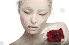 Frozen Woman In Snow And With Rose His Hands Stock Photos