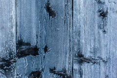 Frozen wood texture Stock Photography