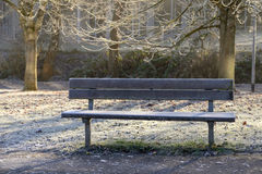 Frozen wooden bench Royalty Free Stock Images