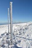 Frozen wooden pillars, vertical orientation Royalty Free Stock Image