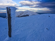 Frozen wooden trunc with galaverna near  the summit of mount Catria in winter at sunset, Umbria, Apennines, Italy. Frozen wooden trunc with galaverna near the Royalty Free Stock Photography