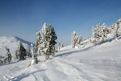 Frozen world. Winter in the mountains of the Kuzbass, Kemerovo Oblast, Russia Royalty Free Stock Photography