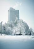 Frozen world Stock Images