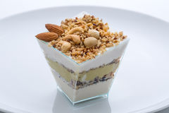 Frozen yogurt cake with nuts Stock Image