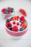 Frozen Yogurt with fresh berries Stock Images