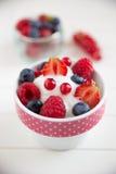Frozen Yogurt with fresh berries Stock Photography