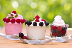 Frozen yogurt. In the glass Stock Photography
