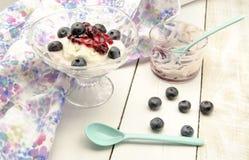 Frozen yogurt and jam Stock Images