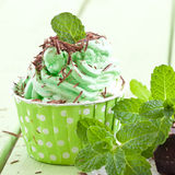 Frozen Yogurt with mint royalty free stock images