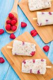Frozen yogurt with oats and raspberries Stock Photography