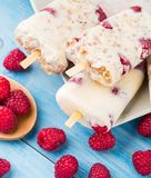 Frozen yogurt with oats and raspberries Stock Image