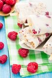 Frozen yogurt with oats and raspberries Stock Photos