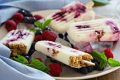 Frozen yogurt popsicles with oats and jam Stock Photography