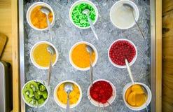 Frozen yogurt toppings bar. Yogurt toppings ranging from fresh fruits Stock Images