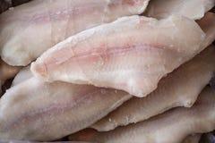Frozzen fish Stock Images