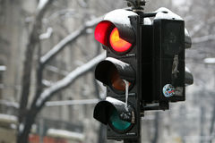 Frozzen traffic light on a cold winter day Stock Images