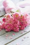 Försiktiga rosa rosor på trätabellen. Arkivbilder