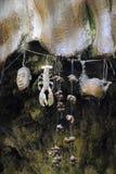 Förstenas vägg i Knaresborough, England Arkivbild