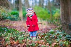 Förtjusande litet barnflicka med första snödroppeblommor Arkivbilder