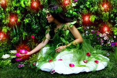 förtrollad trädgård Royaltyfri Bild