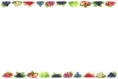 FRU organico di frutti della bacca dei mirtilli dell'uva delle fragole delle bacche Immagine Stock